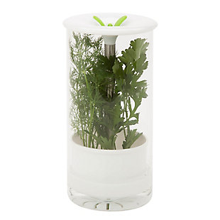 Honey-Can-Do Glass Herb Preserver, , large
