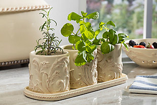 The Gerson Company Acanthus Stoneware 3-piece Herb/plant Holders With Tray, , rollover