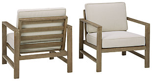 Fynnegan Lounge Chair with Cushion (Set of 2), , large
