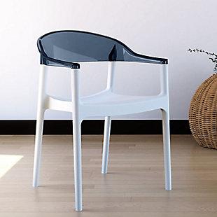Siesta Outdoor Carmen Modern Dining Chair White Seat Transparent Black Back (Set of 2), White/Transparent Black, rollover