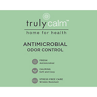 Truly Calm Antimicrobial 5 Piece Twin Bed in a Bag, Gray/White, large