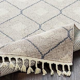 Modern Braided Tassle Area Rug, Multi, large
