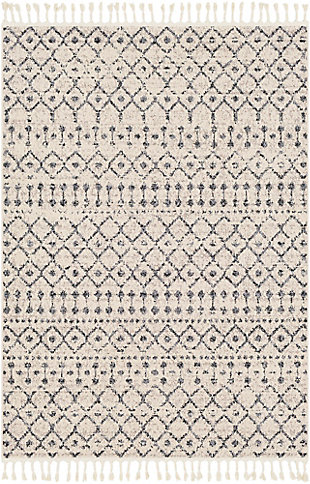 Modern Braided Tassel Area Rug, Multi, large