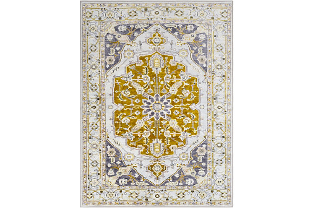 Transitional Area Rug, Multi, large