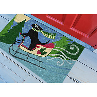 "Decorative Liora Manne Terrene Downhill Racer Outdoor Mat 18"" x 30"", , rollover"