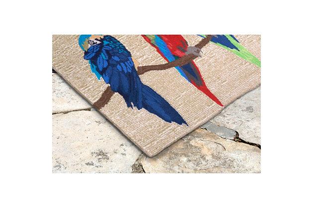 Home Accents Deckside 2' x 3' Aves Indoor/Outdoor Doormat, , large