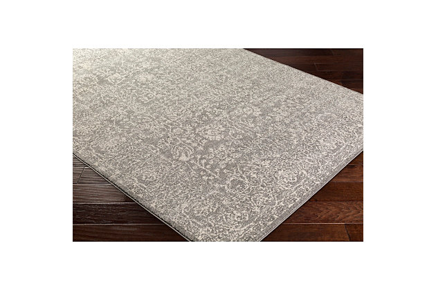 Home Accents Harput 2' x 3' Area Rug, Gray, large