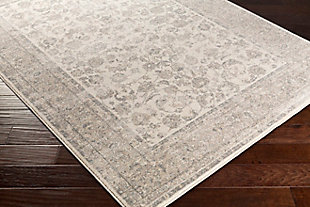 Home Accents Potter Mona Rug 5'3 x 7'3, Gray, rollover
