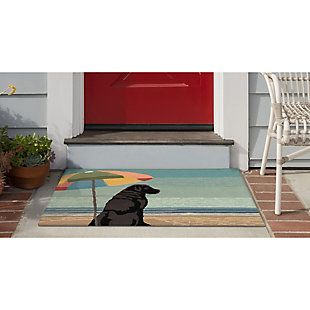 Transocean Deckside Dog Beach Outdoor 2' x 3' Accent Rug, Multi, large